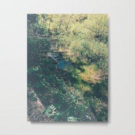 Hiking trail Metal Print