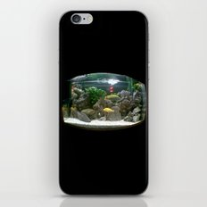 fisheye. iPhone & iPod Skin