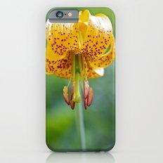 Columbia Lily iPhone 6s Slim Case