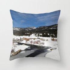 Carson River Throw Pillow