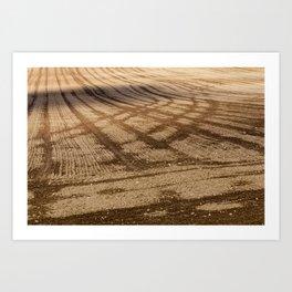 plowed soil Art Print