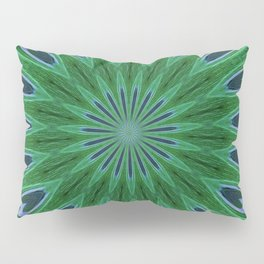 Feather Eyes Pillow Sham