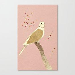 Streptopelia decaocto Canvas Print