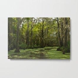 Louisiana Bayou Metal Print