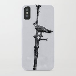Lonely Perch iPhone Case