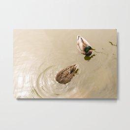 Head under water Metal Print