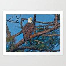 Eagle In Oil Art Print