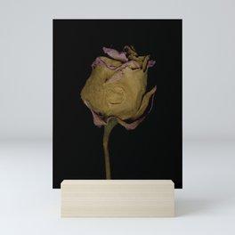 Eldwyn Mini Art Print