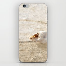 Lost Fish iPhone Skin
