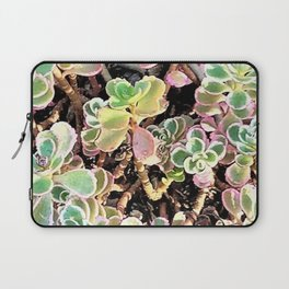 Stonecrop in Color Laptop Sleeve