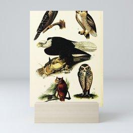 Hawk Owl, Screech Owl, Great Horned Owl, Florida Burrowing Owl, Bald Eagle21 Mini Art Print