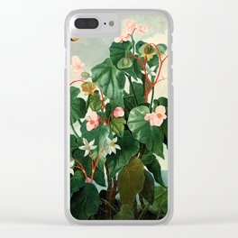 Pink Floral The Oblique-Leaved Begonias : Temple of Flora Clear iPhone Case
