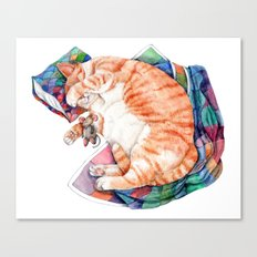 Zoi's Winter Nap Canvas Print