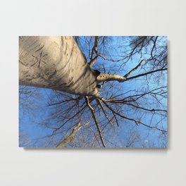 As it is Above Metal Print