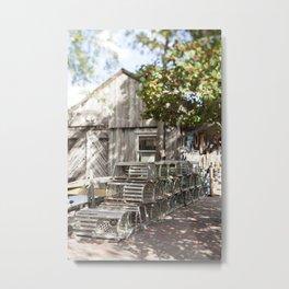 Beneath the Holly Tree Metal Print