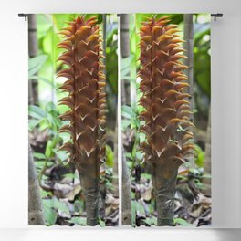 Pineapple ginger Blackout Curtain