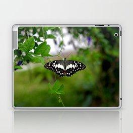 Butterfly Small Laptop & iPad Skin