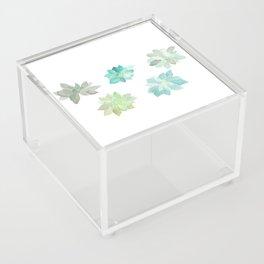 Succulents Acrylic Box