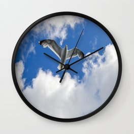 Seagul hovering Wall Clock