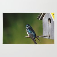 swallow Area & Throw Rugs featuring Barn Swallow by Debbie Maike Photography