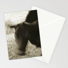 bull shaking head Stationery Cards