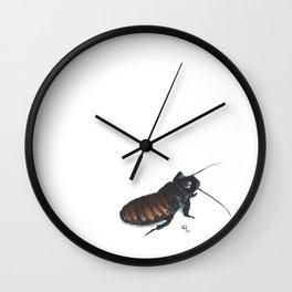 Madagascar Hissing Cockroach Wall Clock
