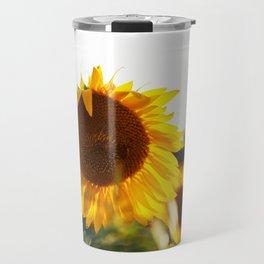 Sunflowers at sunset time Travel Mug