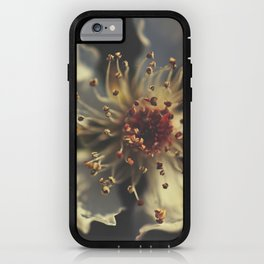 Forgotten Galaxy iPhone Case