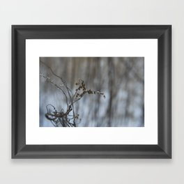 Curled up Framed Art Print
