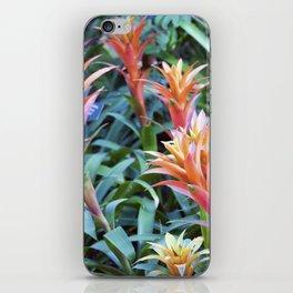 Longwood Gardens - Spring Series 71 iPhone Skin