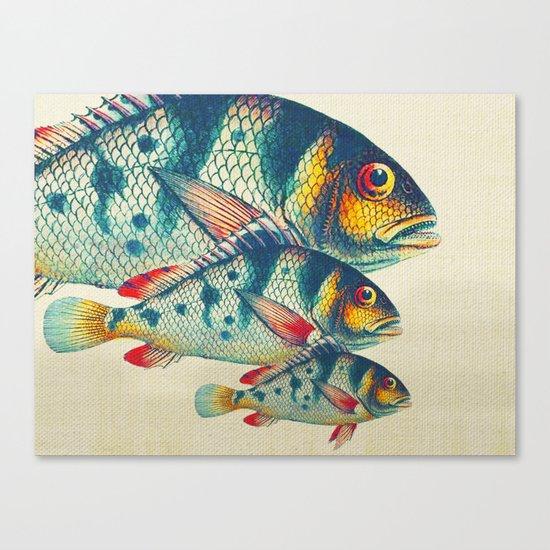 Fish Classic Designs 3 Canvas Print