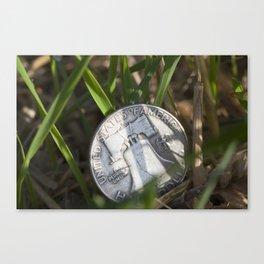 money on grass Canvas Print