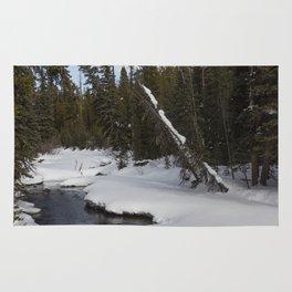 Carol M Highsmith - Snow Covered Landscape Rug