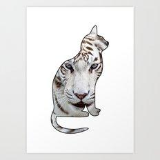 White cats. Art Print