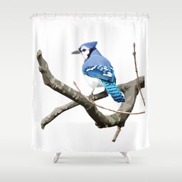 Blue Jay in Branches Shower Curtain