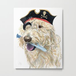 Labradoodle Pirate Metal Print