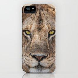 Lioness Portrait (Color) iPhone Case