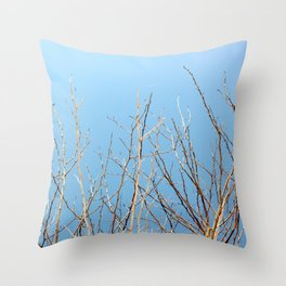 Winter Freeze Throw Pillow