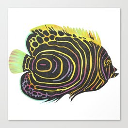 Emperor Angelfish - Pomacanthus imperator Canvas Print