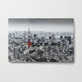 Cinereous City Metal Print