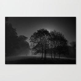 Beddington morning mono Canvas Print