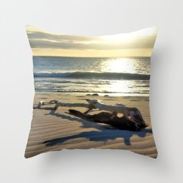 Sunset Driftwood Throw Pillow