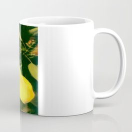 A TOUCH OF  CLASS Coffee Mug