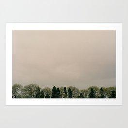 Tree Tops. Art Print