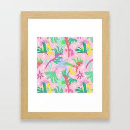 Australian Kangaroo Paw Floral in Pink Framed Art Print