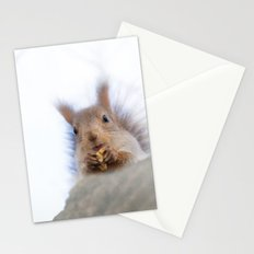 Squirrel with a walnut Stationery Cards
