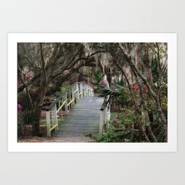 Southern moss and flowers Art Print