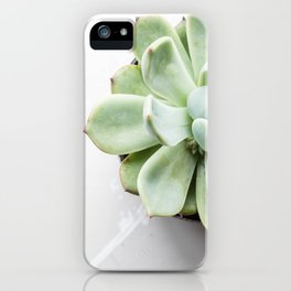 Simple succulent beauty iPhone Case