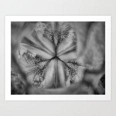 Flower Dance II Art Print