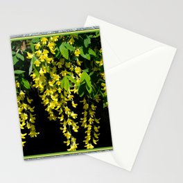 GOLDEN CHAIN TREE LABURNUM ALPINUM Stationery Cards